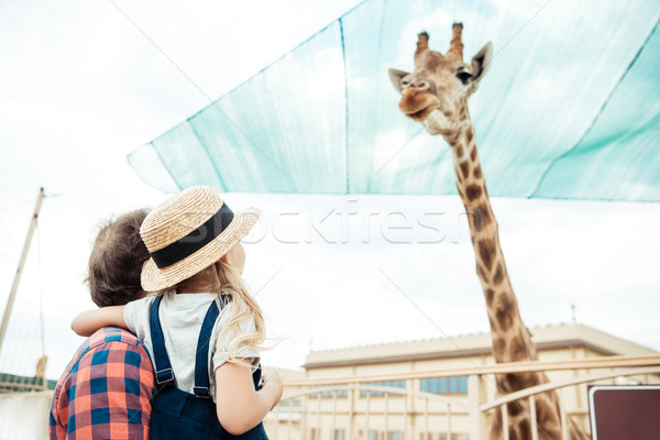 family looking at giraffe in zoo Stock photo © LightFieldStudios