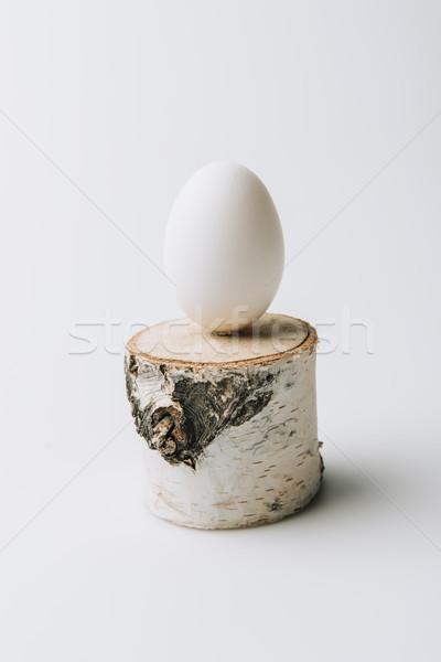 white egg laying on wooden stump on white background Stock photo © LightFieldStudios