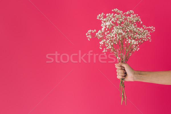 Virágcsokor virágok lövés női kéz tart Stock fotó © LightFieldStudios