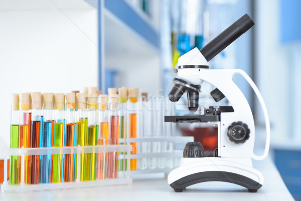 Test tubi microscopio tavola laboratorio lavoro Foto d'archivio © LightFieldStudios