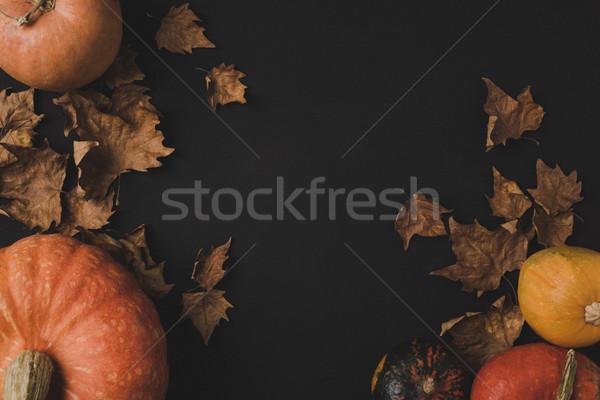 Pompoenen gedroogd bladeren top ruw Stockfoto © LightFieldStudios