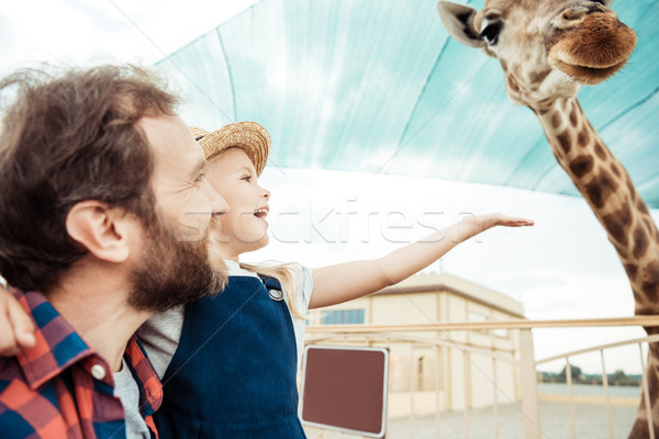 family looking at giraffe in zoo Stock photo © LightFieldStudios