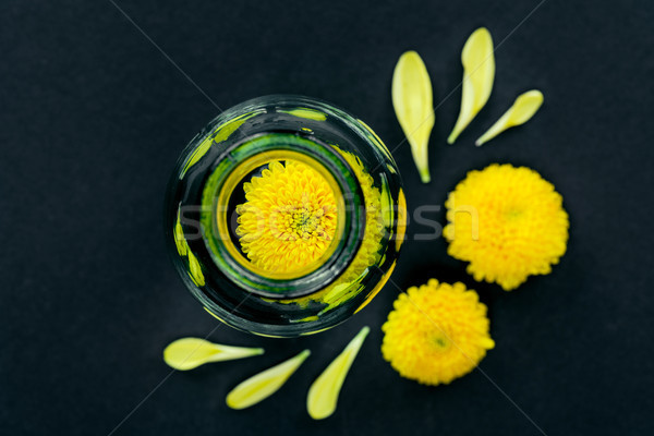 Fiore vetro bottiglia top view shot Foto d'archivio © LightFieldStudios