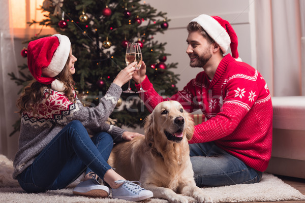 couple drinking champagne at christmastime Stock photo © LightFieldStudios