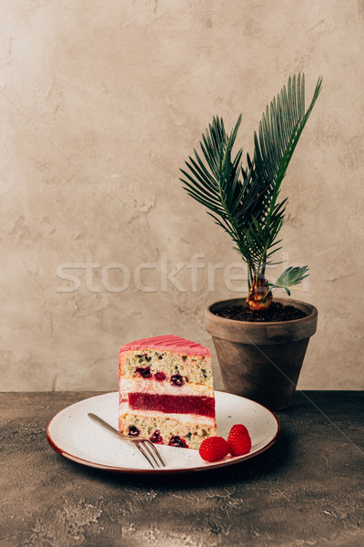 sweet tasty cake with raspberries on plate and green houseplant Stock photo © LightFieldStudios