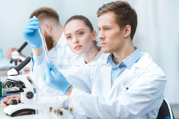 Young man and woman chemists looking at test tube in laboratory Stock photo © LightFieldStudios