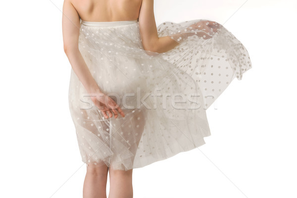 rear view of girl posing in transparent chiffon dress, isolated on white Stock photo © LightFieldStudios