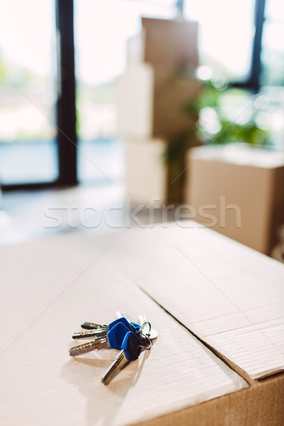 keys on cardboard box Stock photo © LightFieldStudios