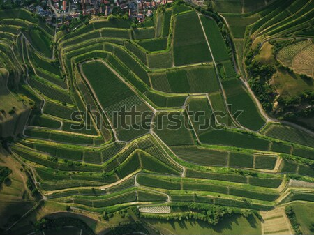 Aerial view of magnificent landscape with fields on tiers, Germany Stock photo © LightFieldStudios