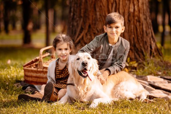 Kinderen hond park weinig vergadering picknickdeken Stockfoto © LightFieldStudios