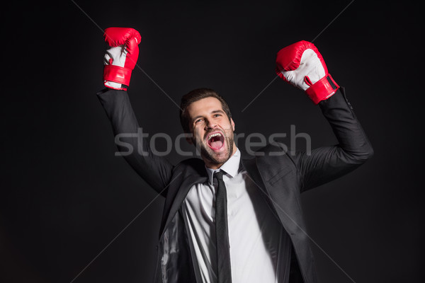 Businessman in boxing gloves Stock photo © LightFieldStudios