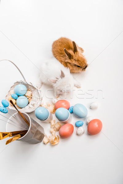 top view of adorable furry rabbits and painted easter eggs on white Stock photo © LightFieldStudios