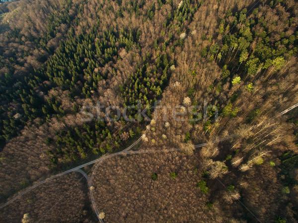 Haut vue paysage vert routes Photo stock © LightFieldStudios