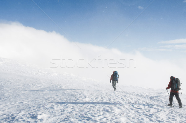 hikers walking on snowy mountains in winter in cloudy weather, Carpathian Mountains, Ukraine Stock photo © LightFieldStudios