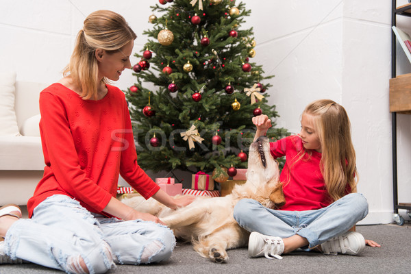 mom, daughter and dog at christmastime Stock photo © LightFieldStudios
