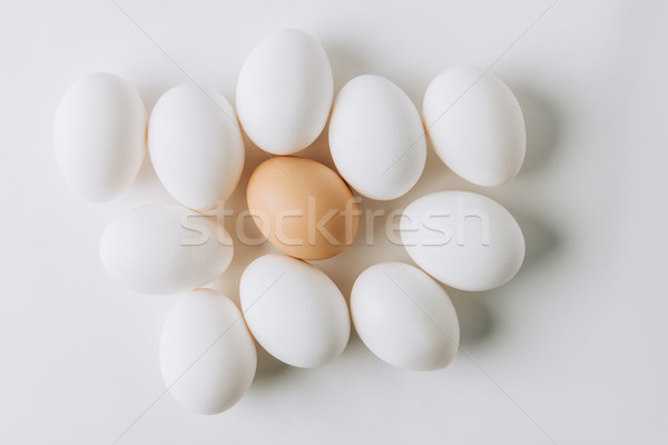 white eggs and one brown laying on white background Stock photo © LightFieldStudios