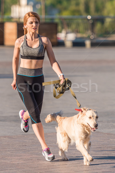スポーツウーマン ジョギング 犬 アスレチック ゴールデンレトリバー 市 ストックフォト © LightFieldStudios