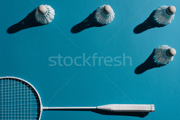badminton racket and shuttlecocks Stock photo © LightFieldStudios