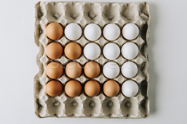 white and brown eggs laying in egg carton on white background     Stock photo © LightFieldStudios
