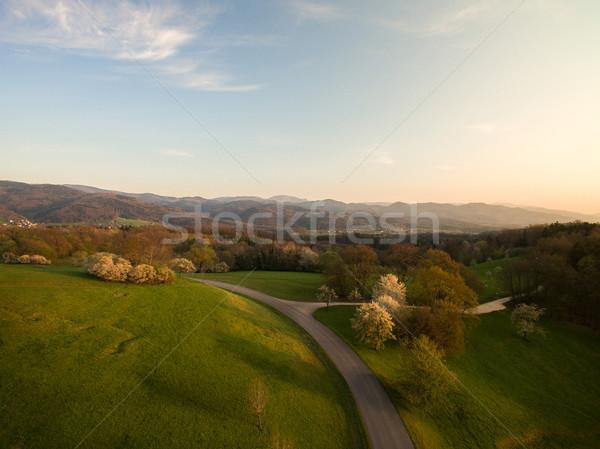 Légifelvétel tájkép zöld dombok út fák Stock fotó © LightFieldStudios
