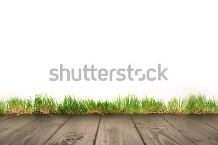 wooden planks and grass Stock photo © LightFieldStudios