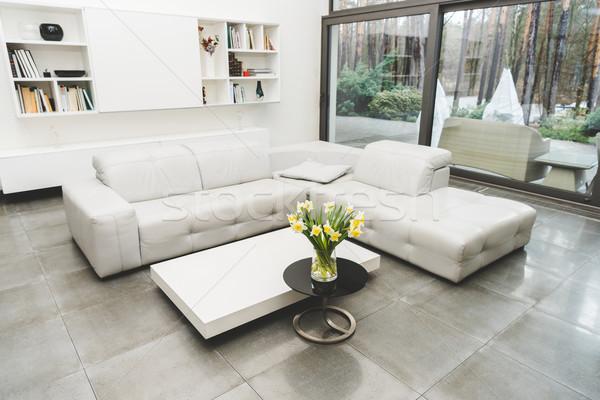 Ver vazio sala de estar branco sofá buquê Foto stock © LightFieldStudios