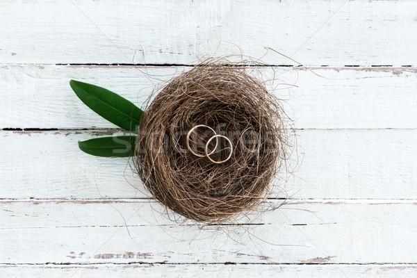Top Ansicht golden Trauringe dekorativ Nest Stock foto © LightFieldStudios
