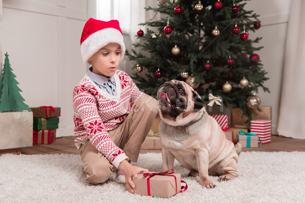 boy with christmas gift and pug Stock photo © LightFieldStudios