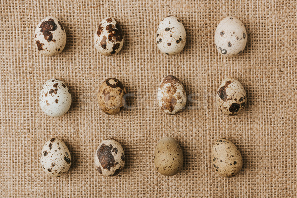 quail eggs laying in a rows on sackcloth  Stock photo © LightFieldStudios