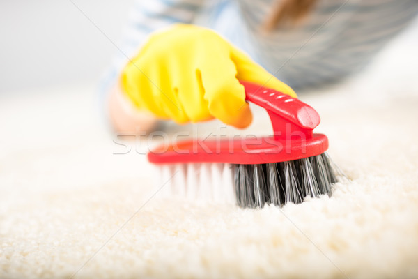 Woman cleaning carpet Stock photo © LightFieldStudios