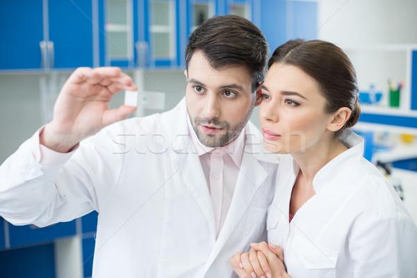 Portret geconcentreerde wetenschappers naar microscoop slide Stockfoto © LightFieldStudios