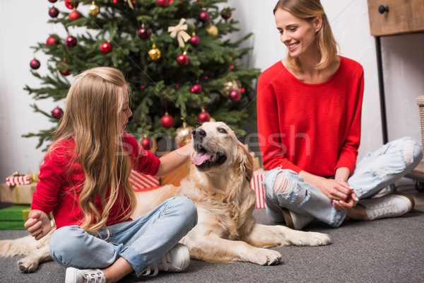 family with dog at christmastime Stock photo © LightFieldStudios