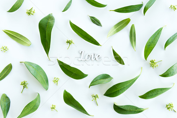 Top view of beautiful fresh green leaves and love symbol isolated on white, wedding invitation flora Stock photo © LightFieldStudios