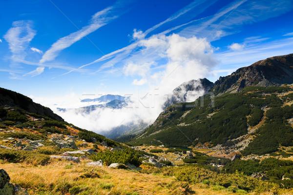 Landscapes Stock photo © Lighthunter