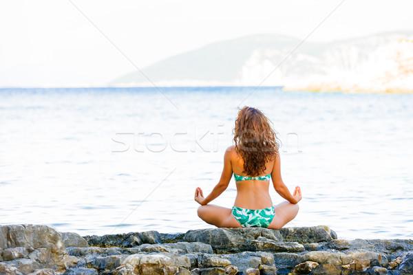 Balance and nature Stock photo © Lighthunter