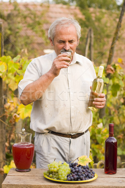 Old Man With Vine Stock photo © Lighthunter