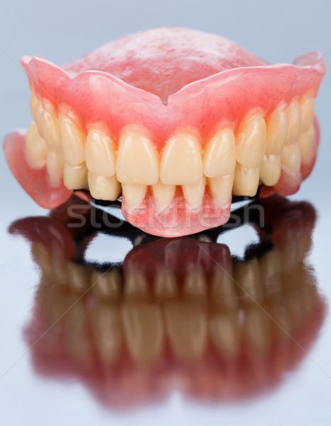 Görmek diş protez akrilik seramik Stok fotoğraf © Lighthunter