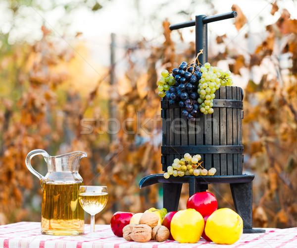 ősz aratás szőlő gyümölcsök bor dzsúz Stock fotó © Lighthunter