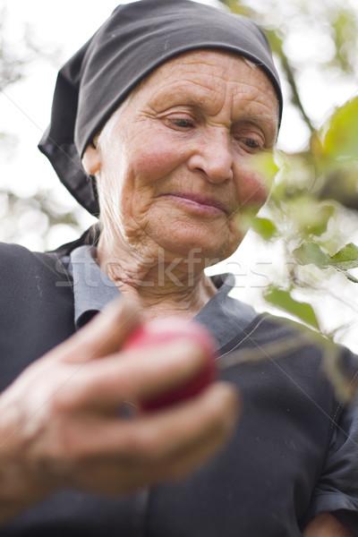 Elderly woman Stock photo © Lighthunter