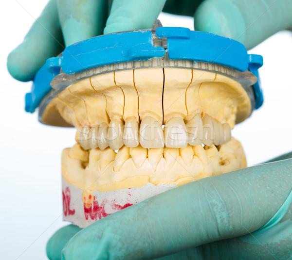 Porselein tanden tandheelkundige brug gezondheid geneeskunde Stockfoto © Lighthunter