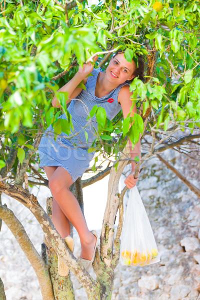 Bio oranje jonge Grieks vrouw Stockfoto © Lighthunter