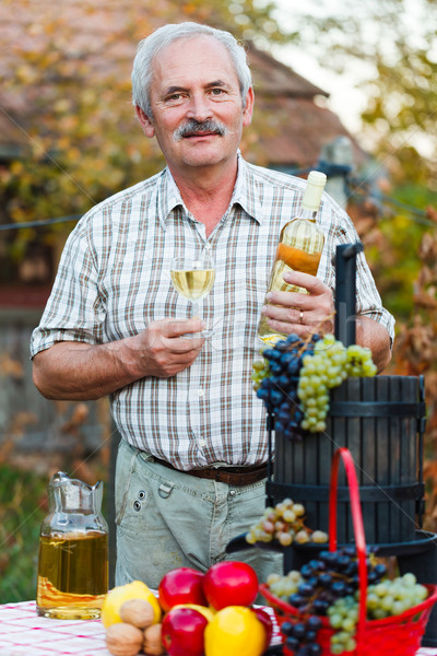 Rico colheita feliz idoso homem vinho Foto stock © Lighthunter
