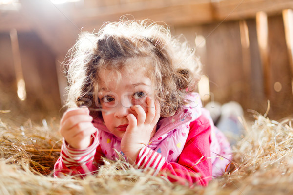 Fuzzy Haired Child in Hay Stock photo © Lighthunter