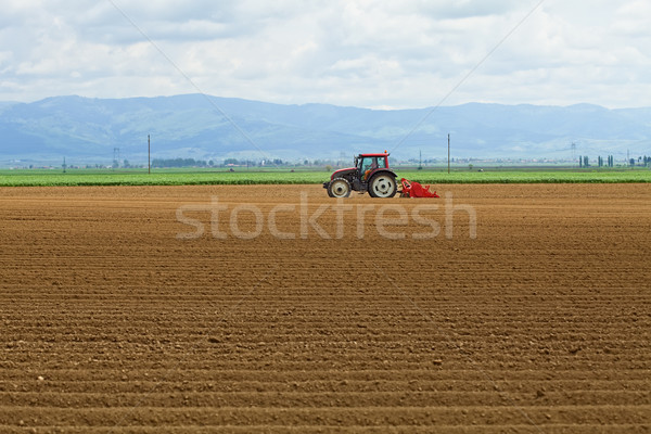 Agriculture - tractor sowing potatoes Stock photo © lightkeeper