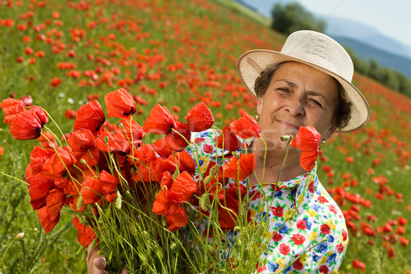 Senior woman on poppy field with a bunch of flowers Stock photo © lightkeeper
