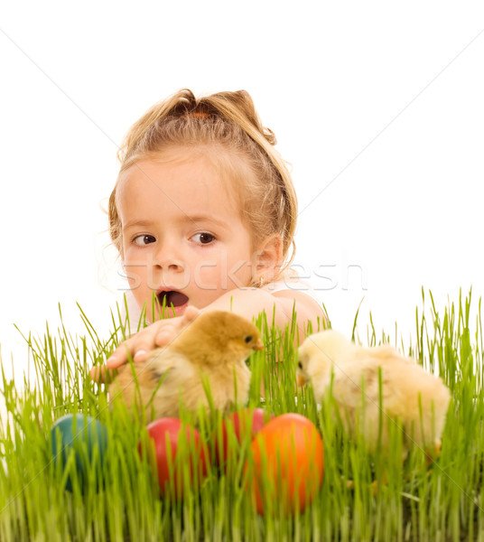 Little girl catching the easter chickens in the grass Stock photo © lightkeeper