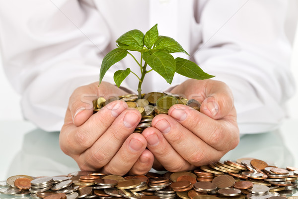 Making money and good investments concept Stock photo © lightkeeper