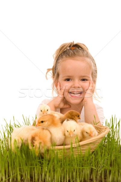 Little girl with a basket full of small chickens Stock photo © lightkeeper