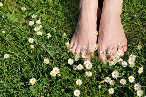 Stok fotoğraf: Anlar · hayat · en · iyi · işler · basit · ayaklar