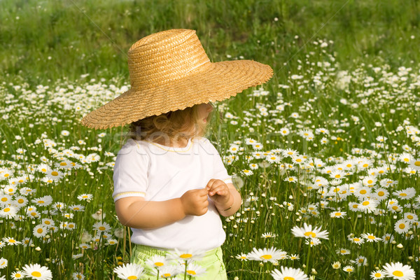 Little girl on the daisy field Stock photo © lightkeeper
